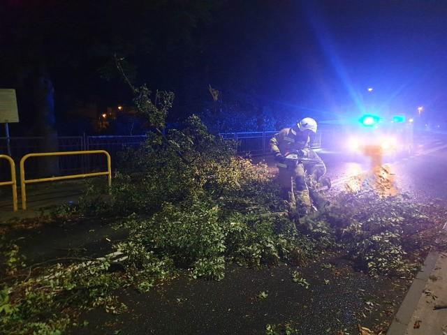 Interwencja OSP Unisław - przewrócone drzewo blokowało drogę