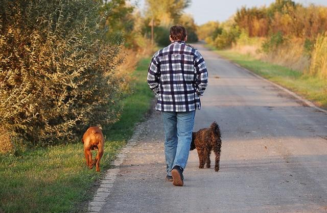 Spacer to nie tylko korzyść dla ciała. Taki wysiłek potrafi uspokoić i odprężyć.