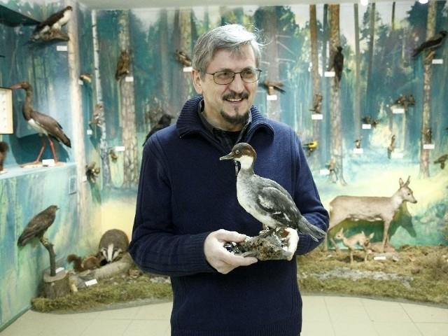 W sali regionalnej jest ponad 400 eksponatów - pokazuje Wiesław Mikucki, kierownik muzeum. W rękach trzyma okaz tracza bielaczka. - Prawie 300 mamy jeszcze w magazynach.
