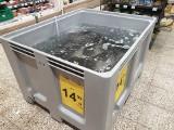 Cena karpia 2020 na święta. Ile za kilogram wigilijnej ryby na 3 dni przed wigilią? CENY w marketach i na rynkach. Grudzień 2020 23.12.20