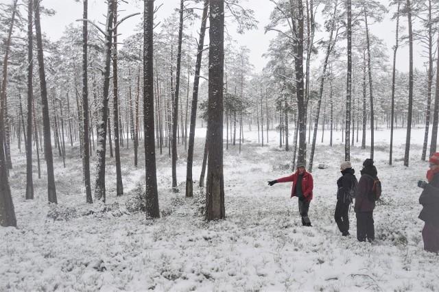 To była 16.  impreza turystyczna z cyklu Zima w Borach Tucholskich. Aura zdecydowanie dopisała