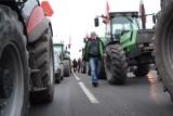 Agrounia zapowiada na wtorek blokady w kilkunastu miastach w kraju. Gdzie należy się spodziewać utrudnień? [LISTA]