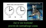 Zmiana czasu na letni - zobacz najlepsze memy i demotywatory, czyli w nocy z 27 na 28 marca 2021 r. przestawiamy zegarki z przymrużeniem oka