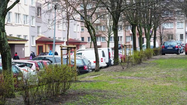 Zdjęcia osiedla Piasta w Białymstoku, po dokonaniu nasadzeń (kwiecień, 2021)