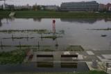 IMGW ostrzega: Podniesie się poziom wody w zlewni Baryczy