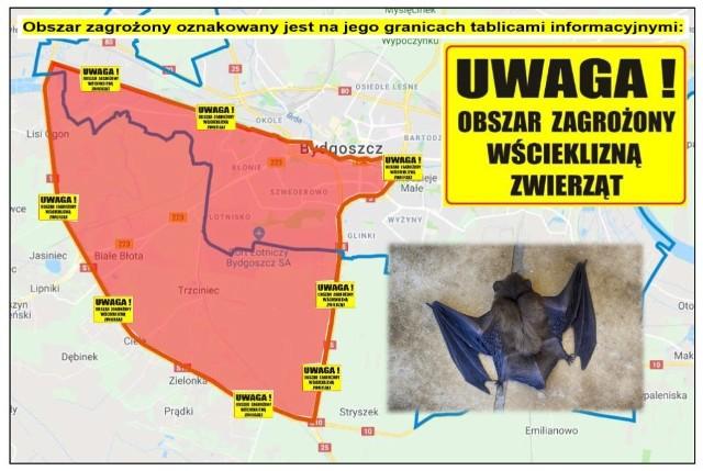 """Obszar zagrożony obejmuje część miasta Bydgoszcz ograniczoną od północy kanałem bydgoskim zaczynając od mostu na drodze krajowej nr """" 10"""", następnie starym kanałem bydgoskim, dalej rzeką Brdą do mostu na drodze krajowej nr """"5""""; od wschodu drogą krajową nr """"5"""" do węzła Bydgoszcz Południe; od południa granicą z Gminą Białe Błota oraz część Gminy Białe Błota od północy ograniczoną granicą z miastem Bydgoszcz; od wschodu drogą krajową nr """"5""""; od południa i zachodu drogą krajową nr """"10"""""""