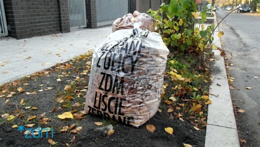 Poznań: ZDM zebrał ponad 530 ton opadłych liści od mieszkańców