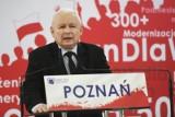 """Jarosław Kaczyński: """"Plan Rabieja"""" ma być realizowany. Dzieci mają być przedmiotami, które są komuś potrzebne do zabawy"""