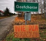 Rada miejska Krosna Odrzańskiego zagłosowała przeciwko lokalizacji biogazowni w Gostchorzu. Co dalej?