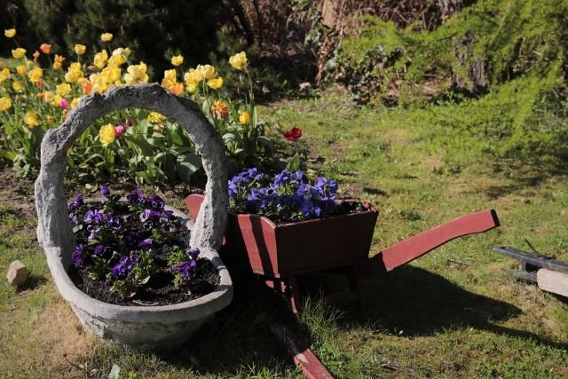 Dekoracje ogrodowe w wiejskim styluStyle ogrodów: jak je aranżować