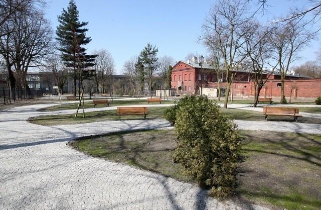 W trakcie ubiegłorocznych prac zasadzono na księżym Młynie 118 drzew i 573 krzewy.