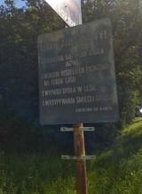 Kraków miastem zakazów. Te znaki i tabliczki potrafią zaskoczyć