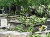 Cmentarze przy Ogrodowej zdemolowane przez burze! Łodzianie przychodzą na groby bliskich i płaczą... ZDJĘCIA