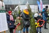 """""""Karma wraca 2019"""" pod Centrum Handlowym Focus Mall w Bydgoszczy. Mieszkańcy odebrali 150 choinek [zdjęcia]"""