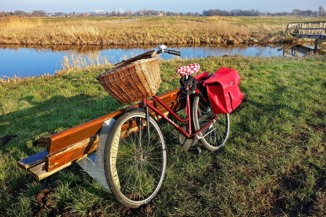 W sobotę, 5 maja Zielona Łódź zaprasza na wycieczkę rowerową po Lesie Łagiewnickim i Parku Krajobrazowym Wzniesień Łódzkich