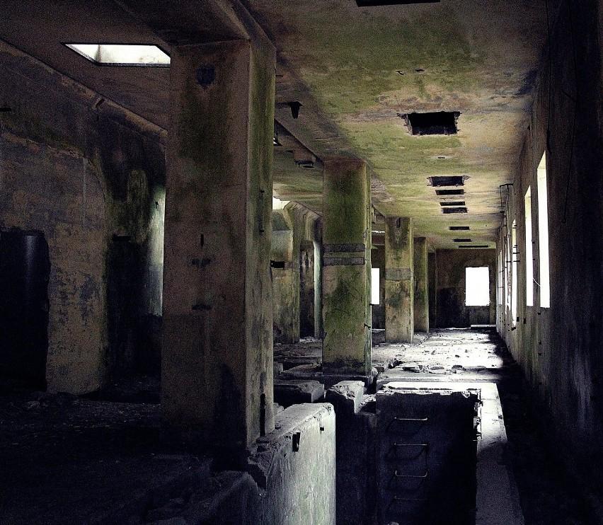 Ruiny niemieckiej fabryki amunicji w Krzystkowicach pod...
