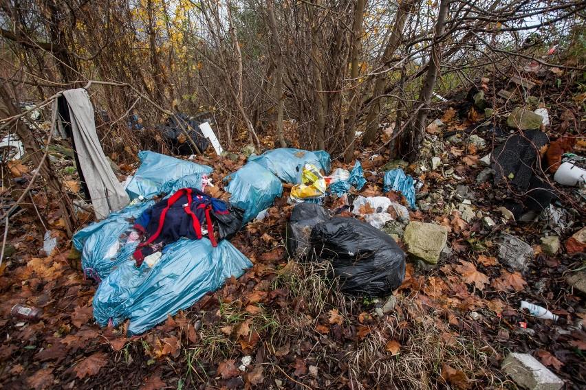 Wyrzucanie śmieci do lasu i na pola jest prawem zabronione.
