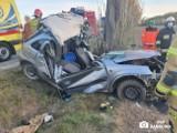 Groźnie wyglądający wypadek między Wolicami a Szczepanowem. Jedna osoba w szpitalu [zdjęcia]