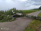 Gwałtowna burza w regionie! Zerwane dachy w Przedłęczu i Kurpiach, powalone drzewa FOTO