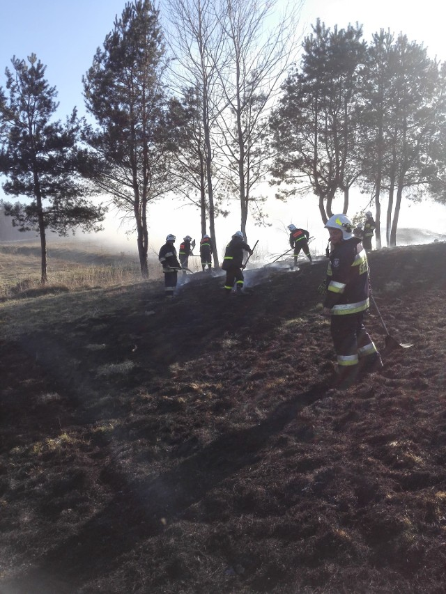 W niedzielę wybuchł pożar lasu w Hucie Brzuskiej koło Birczy w powiecie przemyskim. Z ogniem walczyli strażacy z PSP Przemyśl, OSP Bircza, OSP Sufczyna, OSP Leszczawa Dolna, OSP Borownica, OSP Dubiecko i OSP Kuźmina. Spłonęły dwa hektary lasu i trzy hektary łąk. Jakby tego było mało, strażacy gasili jeszcze drugi pożar około dwóch hektarów łąk i zarośli w Leszczawie Dolnej.Zobacz też: Pożar łąk i drzew w Budach Głogowskich w powiecie rzeszowskim [WIDEO INTERNAUTY]