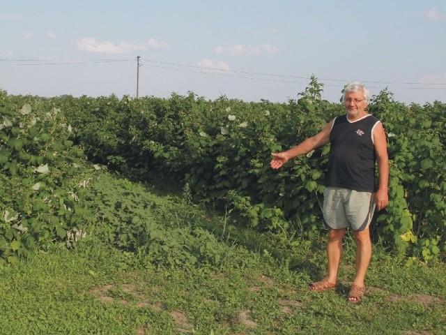 - Sytuacja jest kuriozalna. Kupiłem nowy ciągnik, ale zamiast pracować, traktor stoi w serwisie. Do pracy przy moich uprawach muszę wynajmować sprzęt – mówi Jacek Kurcek z Orłów.