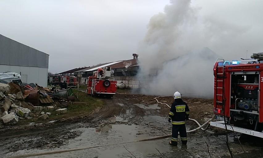 Państwowa Straż Pożarna i strażacy OSP walczyli z pożarem budynku gospodarczego w Objeździe. Jak informuje komenda PSP w Słupsku na tą chwilę nie ma informacji o osobach poszkodowanych. Za wcześniej jest też mówić o przyczynie pożaru.