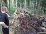 Pożar torfowiska w Otominie. Długa i trudna akcja gaśnicza strażaków. Z ogniem walczyli 6 godzin