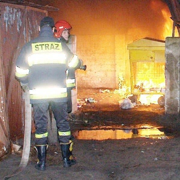 Strażacy gaszą podpalony śmietnik na  lipnowskim osiedlu Reymonta
