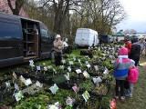 Odwiedź Wiosenne Targi Ogrodnicze i Targi Pszczelarskie w Szepietowie (zdjęcia)