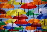 Gdzie kupić parasolkę? Najtańsze i najdroższe parasolki w Łodzi. Najlepsza parasolka w deszczowy dzień