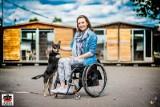 Bezdomne psy ze schroniska maja szansę na prawdziwy dom, gdy gwiazdy się z nimi sfotografują
