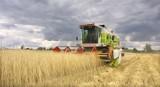 Gospodarstw rolnych w woj. śląskim coraz mniej