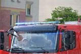 Granaty w garażu w Łodzi. Zabrali je saperzy z Tomaszowa, policja zabezpieczała teren (ZDJĘCIA)