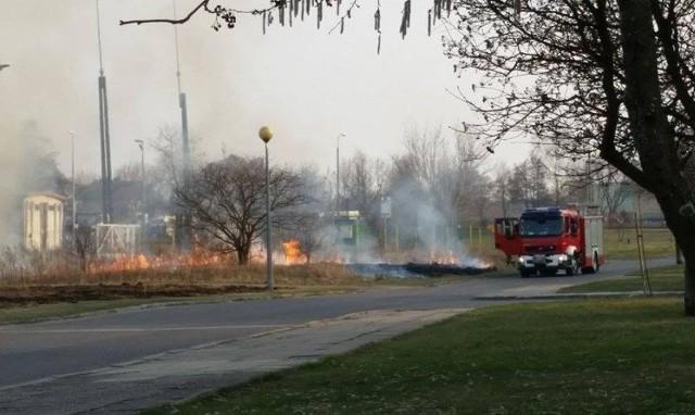 Pożar traw przy ul. Skrajnej w Białymstoku