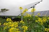 Agroenergia, Moja Woda czy dopłaty do wapnowania gleb - z tych programów NFOŚiGW w 2021 roku skorzysta rolnik