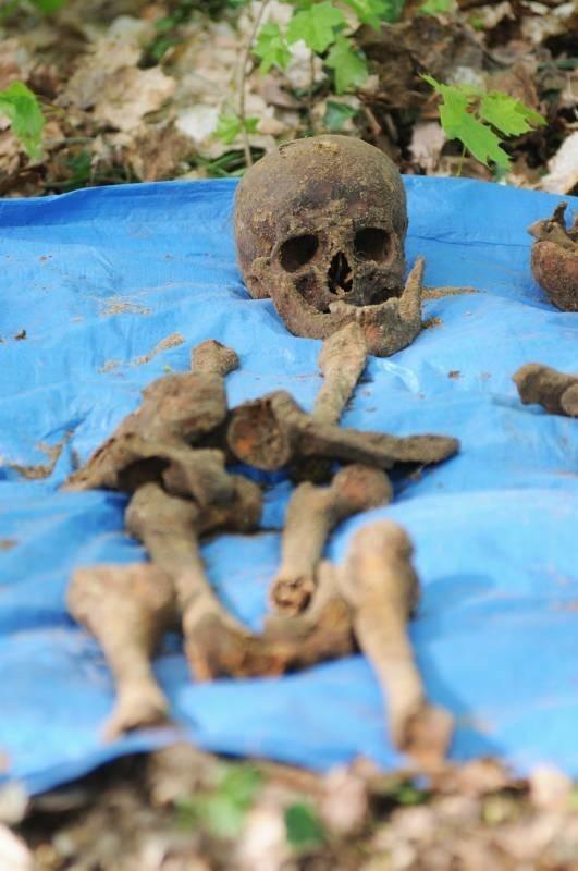 Jeden z kilkudziesięciu szkieletów, które po wykopaniu kompletowali przedstawiciele stowarzyszenia Pomost.