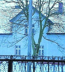 W szarym budynku powstaje dom dziennego pobytu seniora