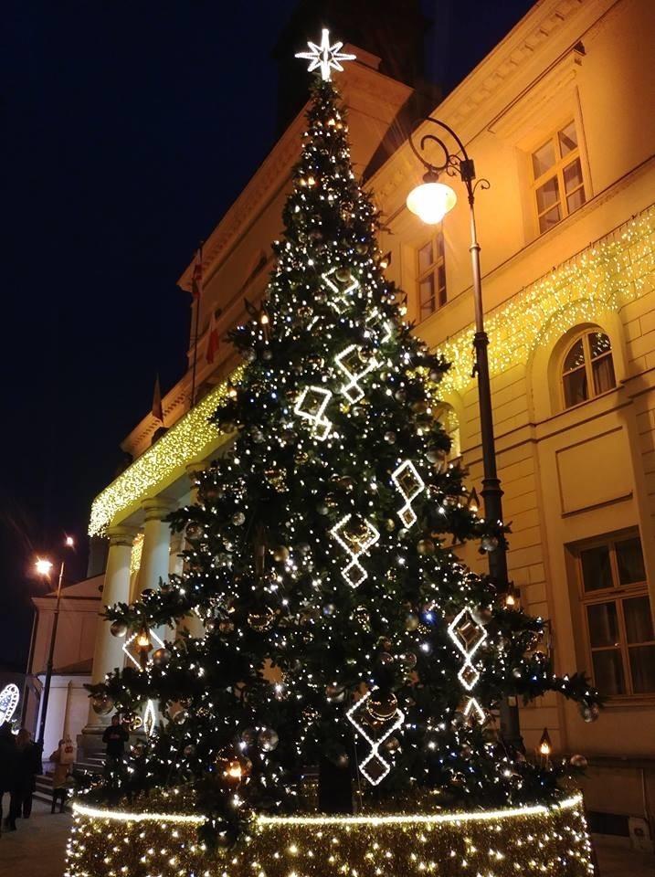 Nowa miejska choinka w Lublinie