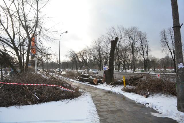 Wykonawca przebudowy skrzyżowania ulic Wernera, Mireckiego i Szarych Szeregów w Radomiu rozpoczął przygotowywanie terenu pod lewoskręty od wycinki drzew.