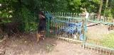 Powiat krasnostawski: Pies zawisł na ogrodzeniu. Pomogli mu strażacy
