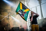 Reggae festiwal powrócił! Wodzisław znów był najcieplejszym miejscem na ziemi. Impreza przyciągnęła tłumy