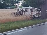 Wypadek na drodze pomiędzy Dusznikami i Sędzinami - samochód uderzył w drzewo, kierowca nie przeżył