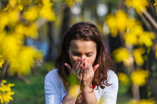 Pyłki atakują układ oddechowy alergików już od lutego. Warto wiedzieć, w jakich miesiącach pylą rośliny wywołujące uczulenie u danej osoby, co stwierdza za pomocą testów. Można wtedy lepiej zabezpieczyć się przed ich działaniem, by ograniczyć dokuczliwe objawy takie jak katar i swędzenie oczu. Na podstawie objawów w kalendarzu można też sprawdzić potencjalnego winnego.Zobacz w kalendarzu, kiedy pylą najbardziej alergizujące rośliny!Zobacz kolejne slajdy, przesuwając zdjęcia w prawo, naciśnij strzałkę lub przycisk NASTĘPNE.