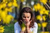Kalendarz pylenia roślin na cały rok. Sprawdź, co może uczulać nie tylko wiosną!
