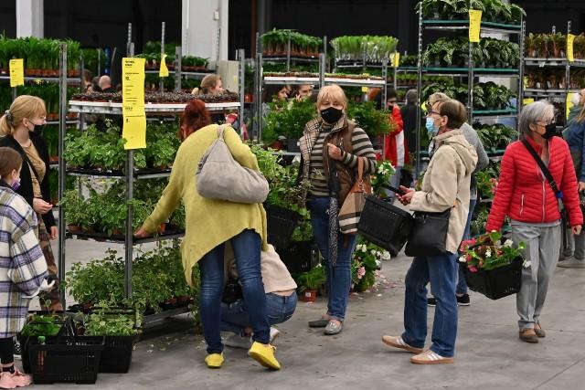 W Targach Kielce trwa Festiwal Kwiatów. Zobacz niezwykłe rośliny, jakie można kupić. Wielka wyprzedaż roślin doniczkowych oraz ich wystawa potrwa dwa dni - w sobotę, 22 maja i niedzielę, 23 maja. Warto przyjść!Więcej zdjęć na kolejnych slajdach