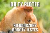 Janusz Nosacz z memów stał się bohaterem polskiego internetu. Gdzie można go spotkać? NOWE MEMY