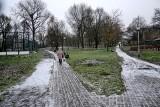 Wycięto kolejne drzewa w Zielonej Górze. Tym razem w parku Sowińskiego. Mieszkańcy są oburzeni. Zostały tylko puste miejsca [ZDJĘCIA]