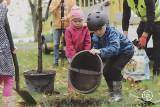 Krosno Odrzańskie. Stowarzyszenie 515 z młodymi i starszymi mieszkańcami miasta zasadzili drzewo w Parku Tysiąclecia