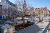 Przebudowa placu Kolegiackiego w Poznaniu: Gdy zrobiło się nieco cieplej, prace ruszyły. Zobacz, co się już zmieniło