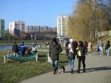 Słoneczna niedziela w Opolu. Opolanie w plenerze korzystali z pogody. Wyciągnęli rowery, hulajnogi i rolki